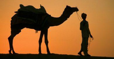 15409_kisah-unta-dan-pria-di-padang-pasir